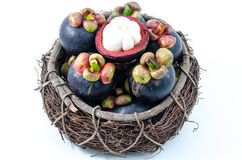Mangosteen the queen of Thai tropical fruit Royalty Free Stock Photo