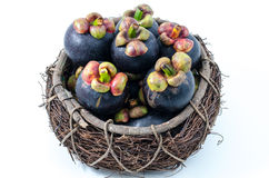 Mangosteen the queen of Thai tropical fruit Royalty Free Stock Photos