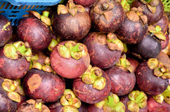 Mangosteen on sale in the fruit market Stock Image