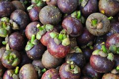 Mangosteen on sell in market royalty free stock images