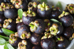 Mangosteen selling Royalty Free Stock Image