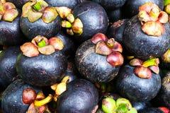 Mangosteen Thai fruit Stock Photography