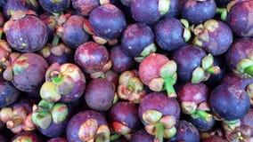 Mangosteen. Top ten of Thai fruit Royalty Free Stock Photo