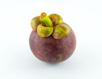 Mangosteen white background. Asia juicy Stock Images