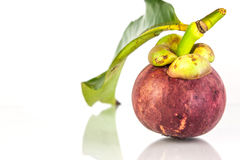 Mangosteen2 Stock Photography