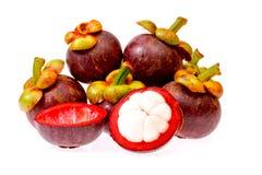 Mangosteenfrukt av Thailand på vitbakgrund Fotografering för Bildbyråer