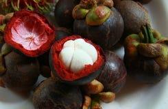 Mangosteenfrukter Fotografering för Bildbyråer