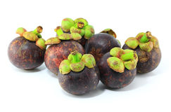 Mangosteens fruit Stock Images