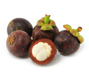 Mangosteens fruit Stock Image