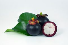 Mangosteens on white background. Asian fruit mangosteen on white background Royalty Free Stock Photography