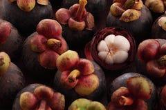 mangosteenträmassa Royaltyfri Fotografi