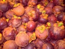 Mangostene in Kerala, Indien Lizenzfreies Stockbild