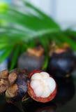 Mangostins и свежие зеленые лист Стоковые Фото