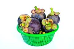 Mangoteen. Group of mangosteen in green basket Stock Photos