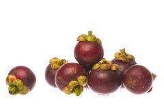 mangoustans d'isolement Photographie stock libre de droits