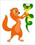 Mangouste avec le serpent Images libres de droits