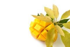 Mangowa owoc z liścia odosobnionym białym tłem Obrazy Stock