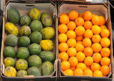 mangowa pomarańcze zdjęcia royalty free