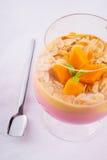 Mangowy owocowy koktajl Obrazy Stock