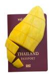mangowy paszport Zdjęcia Stock