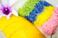 mangowy ryżowy kleisty Obrazy Stock