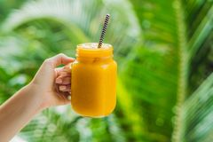 Mangowy smoothie w szklanym kamieniarza mango na zielonym tle i słoju Mangowy potrząśnięcie Tropikalnej owoc pojęcie Obraz Royalty Free