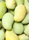 mangoyellow Arkivbild