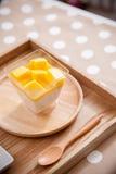 Mangoyoghurt på den wood plattan Arkivbilder