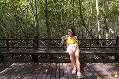 mangrove imagem de stock royalty free