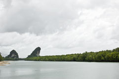 Mangrove canal and harbor Royalty Free Stock Photo
