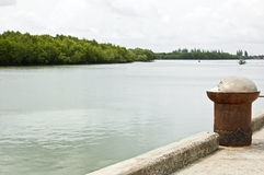 Mangrove canal and harbor royalty free stock images