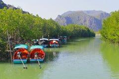 Mangrove en boten stock afbeeldingen