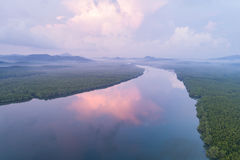 Mangrove forest and river at Phang-Nga bay southern of Thailand. Green mangrove forest and river at Phang-Nga bay southern of Thailand. Aerial view from flying Stock Photography