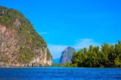 Mangrove Forest in Thailand Royalty Free Stock Images