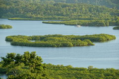 Mangrove island in archipelago of Bocas del Toro Royalty Free Stock Images
