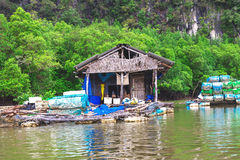 Mangrove jungle. Kayaking station. Fisher house at water Royalty Free Stock Photography