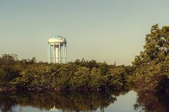 Mangrove preserve looking at the water tower royalty free stock photography