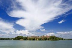 Free Mangrove Swamp Coastline Royalty Free Stock Images - 2454089