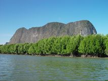 Mangroves in Thailand. Mangroves west of Phang Nga in Thailand stock photos
