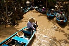 Mangrovia nel delta del Mekong, Vietnam Fotografia Stock Libera da Diritti