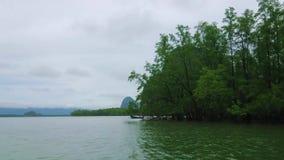 Mangrovie intorno a Koh Talu Island, parco nazionale di Ao Phang Nga, Tailandia archivi video