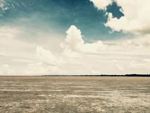 Mangrowe krajobraz Fotografia Royalty Free