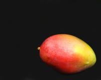 Mangue Photographie stock libre de droits