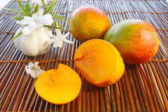 mangue Images stock