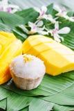 Mangue avec du riz collant Photos stock