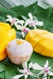 Mangue avec du riz collant Photographie stock