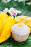 Mangue avec du riz collant Photographie stock libre de droits