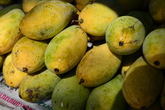 Mangue de fruits Photos libres de droits