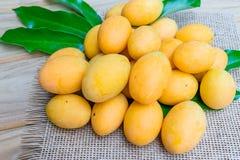 Mangue de prune, ou fruit marial de prune Photo libre de droits