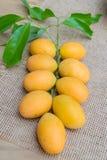 Mangue de prune, ou fruit marial de prune Images libres de droits